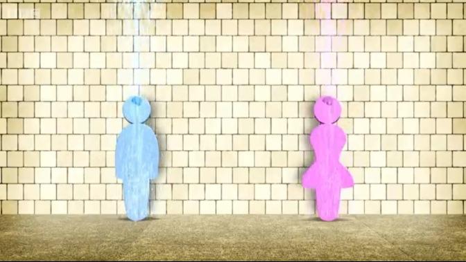 pink-brain-blue-brain